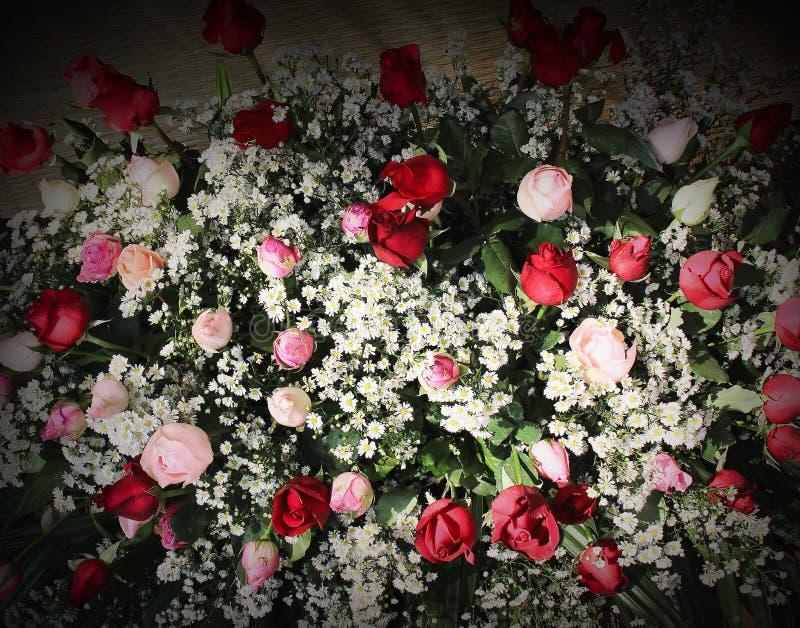 Bunter Blumenstrau? dekorativ von bl?henden Mustern der roten und rosa Rosen mit Beschaffenheit des wei?en G?nsebl?mchens f?r Hin lizenzfreie stockfotografie