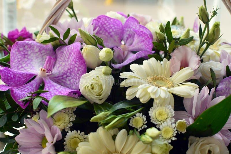 Bunter Blumenstrauß von weißen und lila Blumen stockbilder