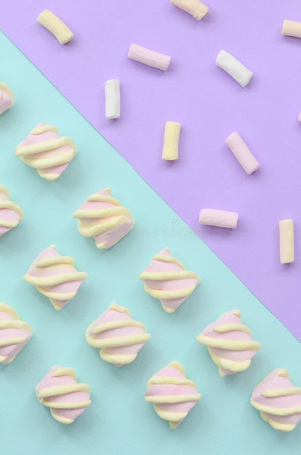 Bunter Eibisch ausgebreitet auf violettem und blauem Papierhintergrund kreatives strukturiertes Pastellmuster minimal stockbild