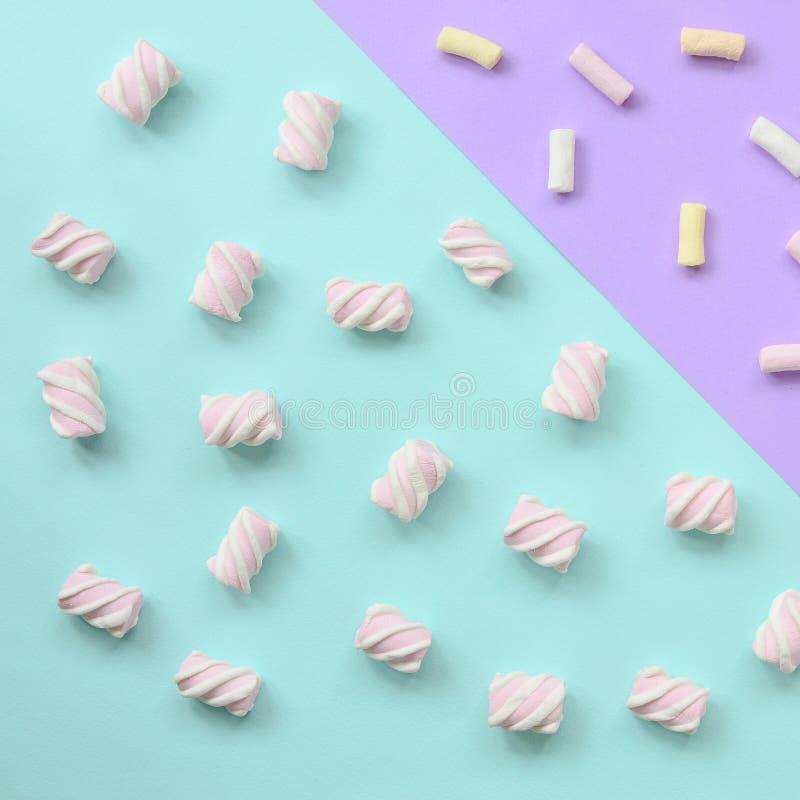 Bunter Eibisch ausgebreitet auf violettem und blauem Papierhintergrund kreatives strukturiertes Pastellmuster minimal lizenzfreie stockbilder