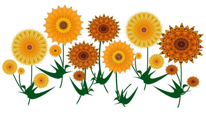 Bunter gelber und orange digitaler Kunstsommer blüht auf Weiß lizenzfreie abbildung
