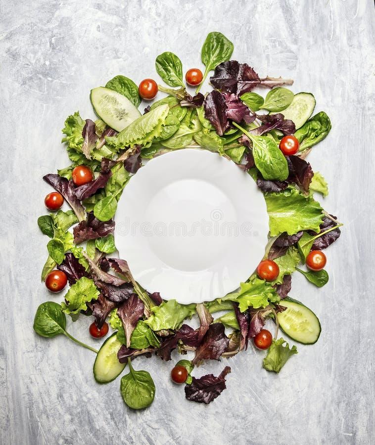 Bunter gesunder Salat mit Gurke und Tomaten um weiße leere Platte, auf hellgrauem hölzernem Hintergrund, Draufsicht lizenzfreie stockbilder