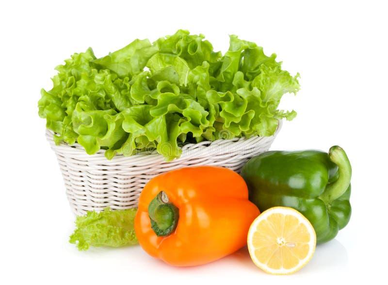 Bunter grüner Pfeffer mit Zitrone und Kopfsalat lizenzfreies stockbild