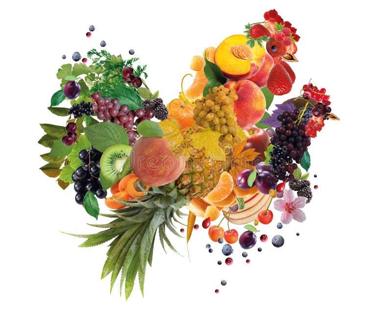 Bunter Hahn und Henne gemacht von der Frucht - 2017-jähriges Symbol stockbild
