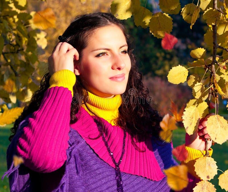 Bunter Herbst 10 lizenzfreie stockbilder