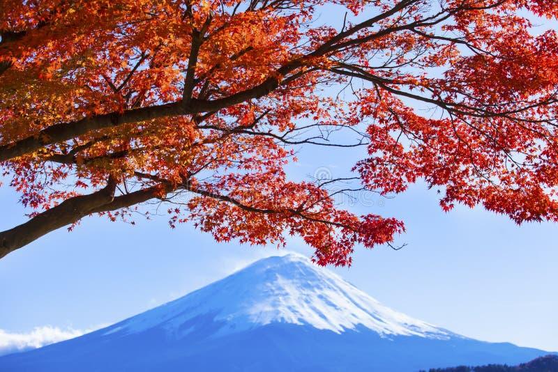 Bunter Herbst im Fujisan Japan - See Kawaguchiko ist ein von stockfotos