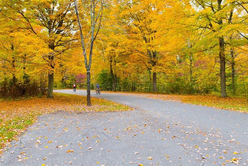 Bunter Herbst im Park stockbild