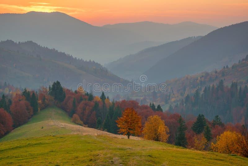 Bunter Herbstabend nach Sonnenuntergang in den Karpatenbergen stockbild