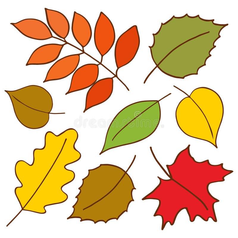 Bunter Herbstlaub eingestellt Hand gezeichneter Illustrationsvektor stock abbildung