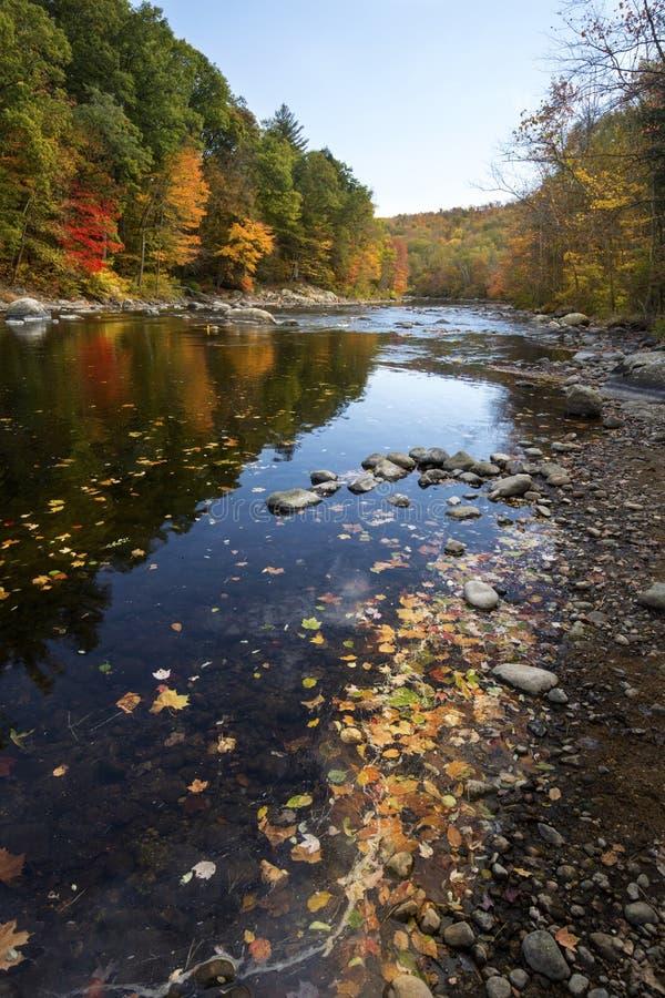 Bunter Herbstlaub entlang dem Farmington-Fluss im Bezirk, Anschl. lizenzfreies stockbild
