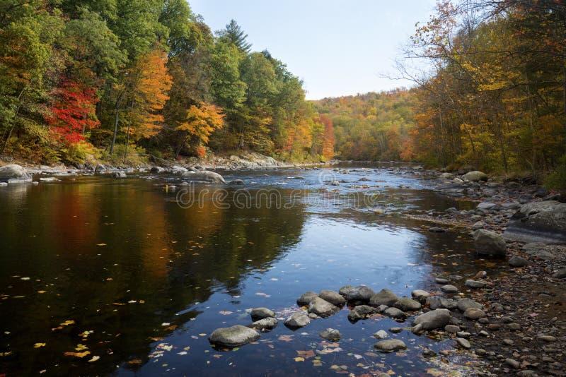 Bunter Herbstlaub entlang dem Farmington-Fluss im Bezirk, Anschl. lizenzfreies stockfoto