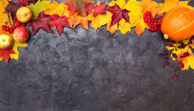 Bunter Herbstlaub mit Apfel, Eberesche und Kürbis auf einem Schwarzen stockbild