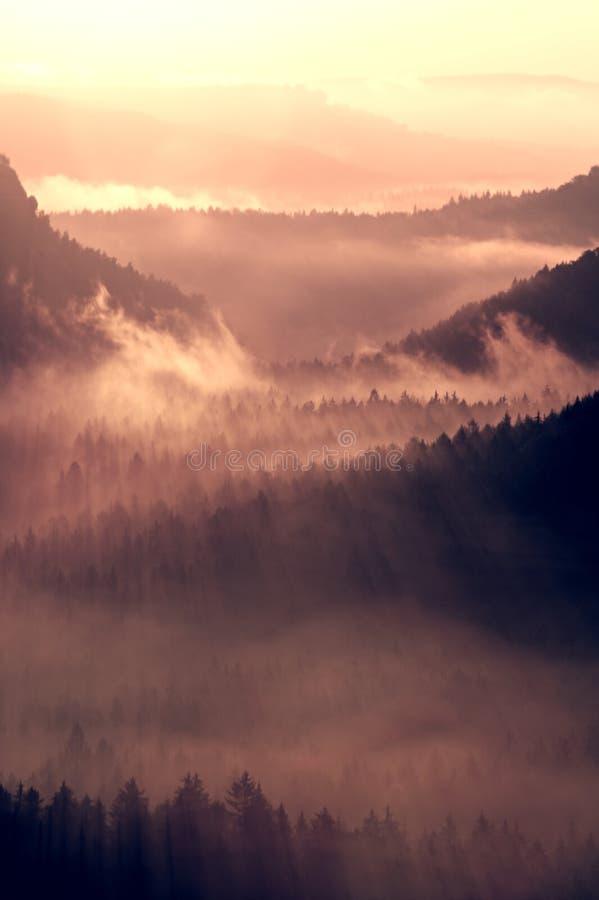 Bunter Herbsttagesanbruch Nebelhaft, in schöne Hügel weckend Spitzen von Hügeln haften heraus vom klaren Nebel stockbild