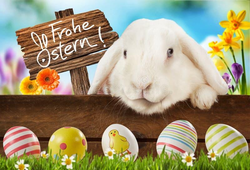 Bunter Ostern-Hintergrund mit nettem weißem Häschen lizenzfreies stockfoto