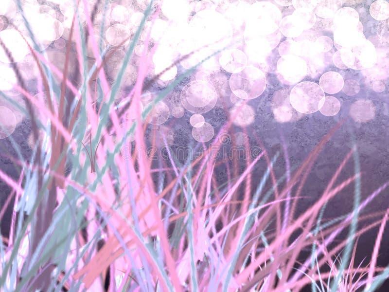 Bunter purpurroter Pastellrasen mit Gras mit weißen Höhepunkten stockfotos