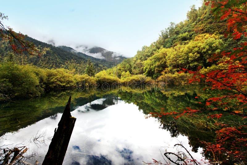 Bunter See in Jiuzhai-Tal stockfotos