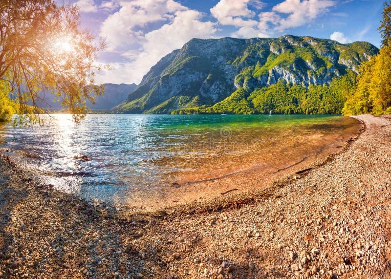 Bunter Sommermorgen auf dem Bohinj See stockfotografie