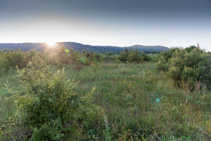 Bunter Sommersonnenuntergang in den Bergen stockfotografie