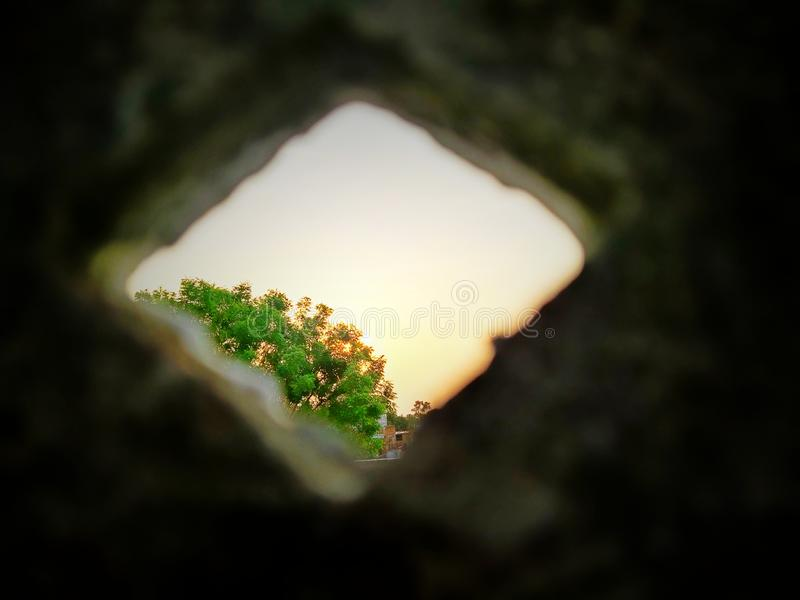 Bunter Sonnenaufgang mit Baum Sch?ne Ansicht lizenzfreies stockfoto