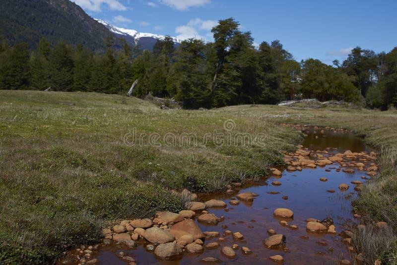 Bunter Strom im Patagonia stockfotografie