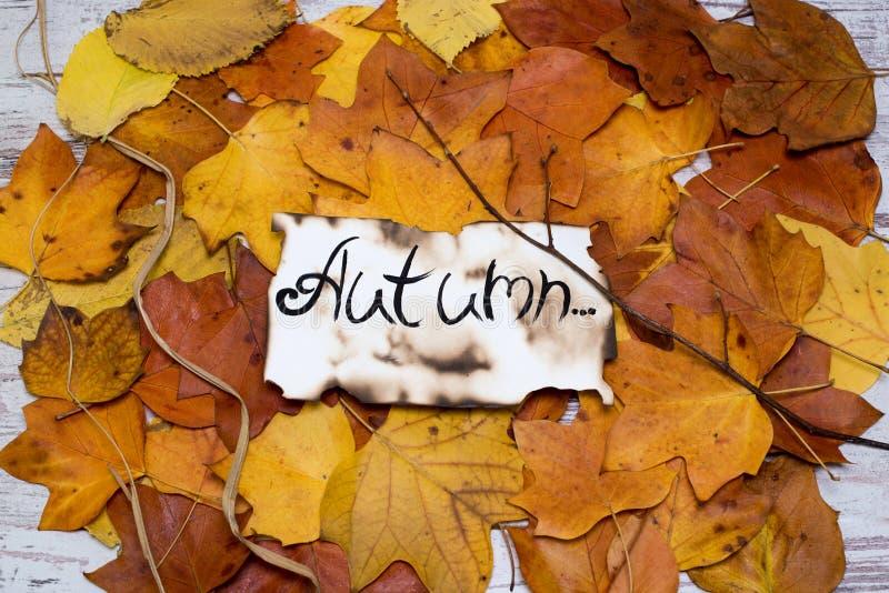 Bunter und heller Hintergrund des gefallenen Herbstlaubs die Aufschrift ist der Herbst auf Pergament Getrennt auf Weiß lizenzfreie stockbilder