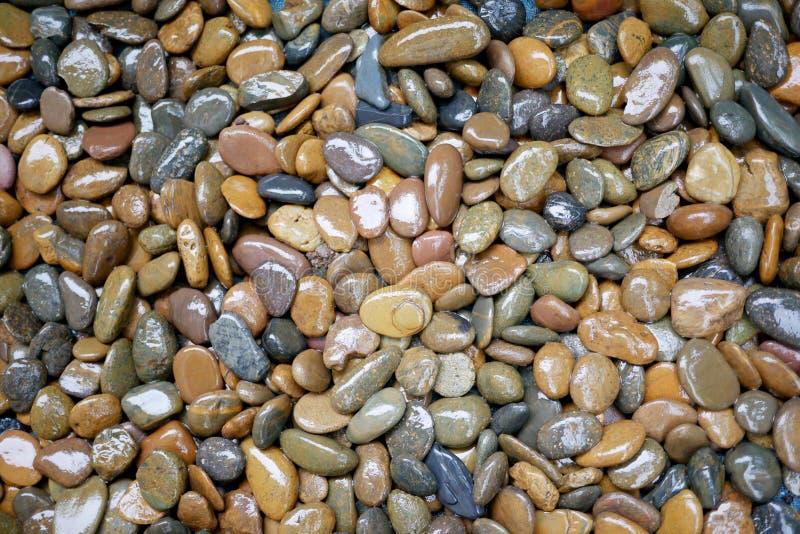 Bunter und nasser Stein stockfotografie