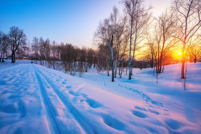 Bunter Wintersonnenuntergang lizenzfreies stockfoto