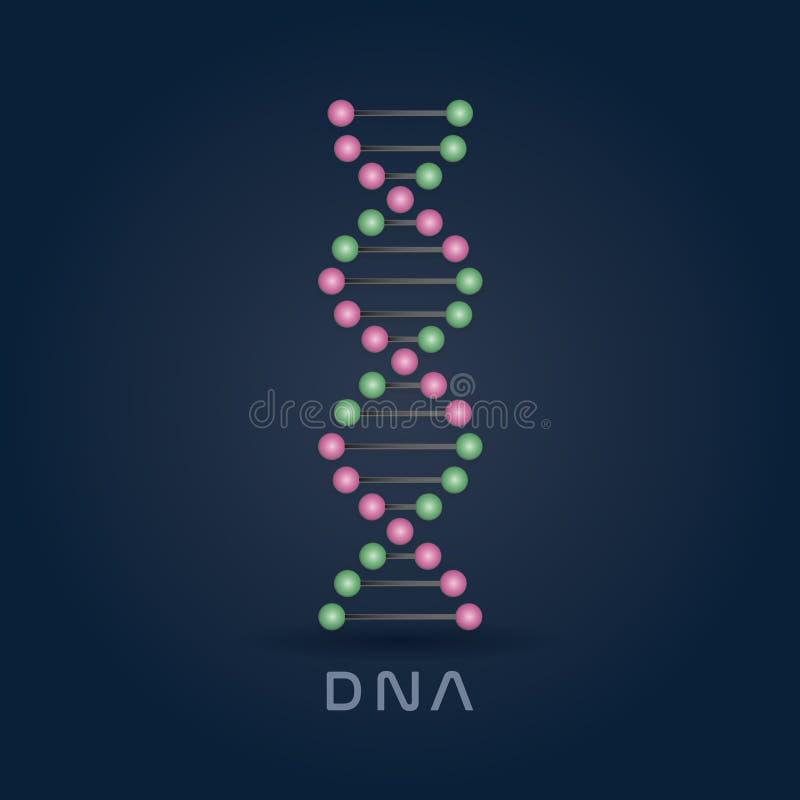 Buntes abstraktes DNA-Strangs-Symbol lokalisiert auf dunkelblauem Hintergrund lizenzfreie abbildung