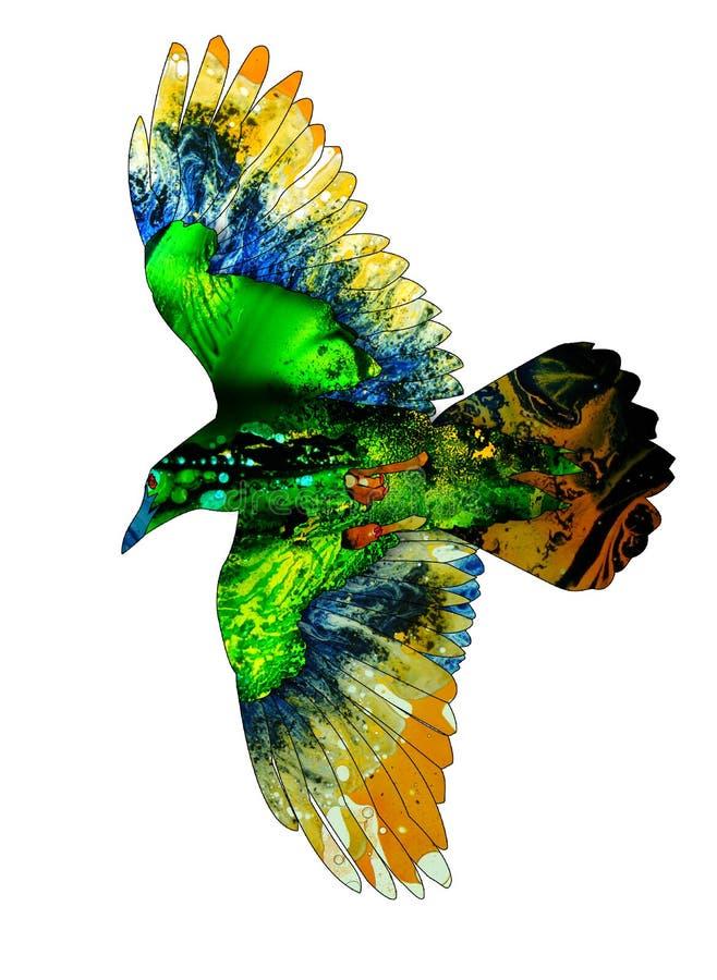 Buntes Aquarell oder Karikatur redeten Illustration einer Fliegenkrähe an stock abbildung