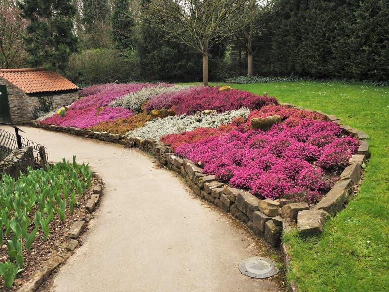 Buntes Blumenbeet mit Mischheide stockfotos