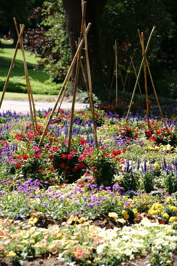 Buntes Gartenbett mit hölzernen Stangen stockfoto