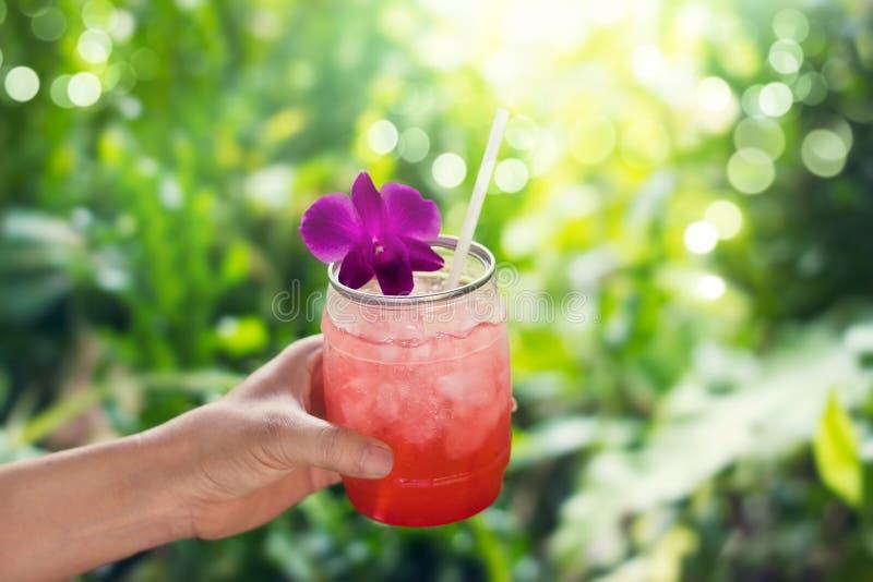 Buntes kühles Getränk im Sommer auf Naturhintergrund lizenzfreie stockfotos