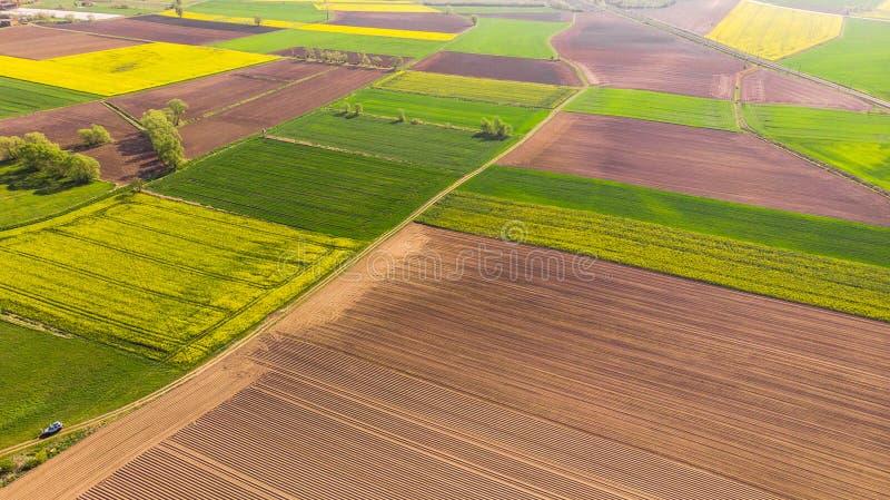 Buntes Landwirtschaftsackerland am Fr?hling, Luftbrummenansicht stockfoto