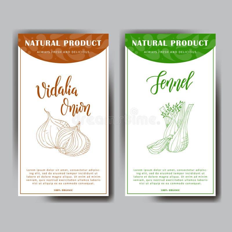 Buntes Skizzengemüse Gesundes Lebensmittelplakat Landwirtmarktgestaltung mit vidalia Zwiebel und Fenchel Auch im corel abgehobene lizenzfreie abbildung