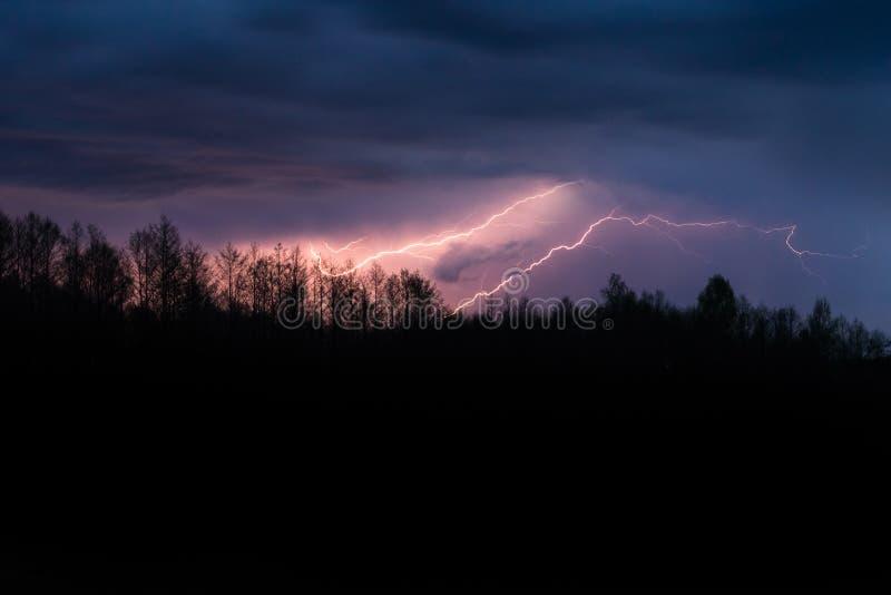 Buntes Sommergewitter ?ber dem Wald nachts Gro?artige beleuchtende Streiks im Himmel lizenzfreie stockfotografie