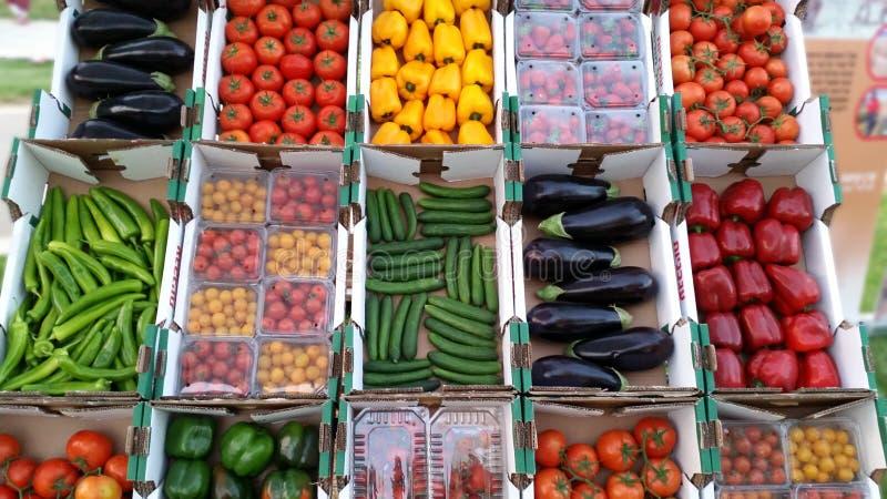 Buntes sortiertes Gemüse lizenzfreies stockfoto