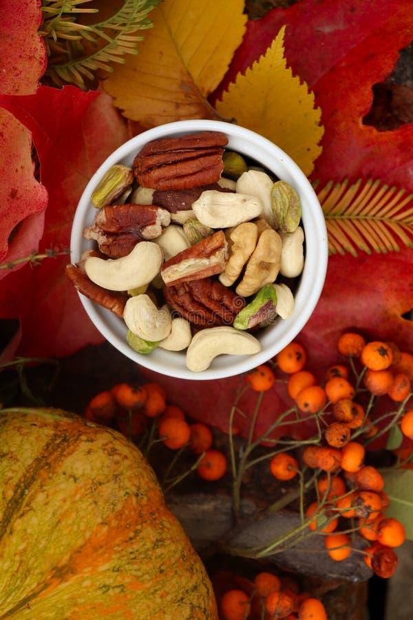 Buntes Stillleben des Herbstes mit Blättern und Nüssen lizenzfreies stockbild