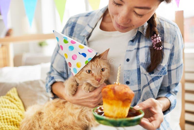 Buon compleanno al gatto fotografia stock