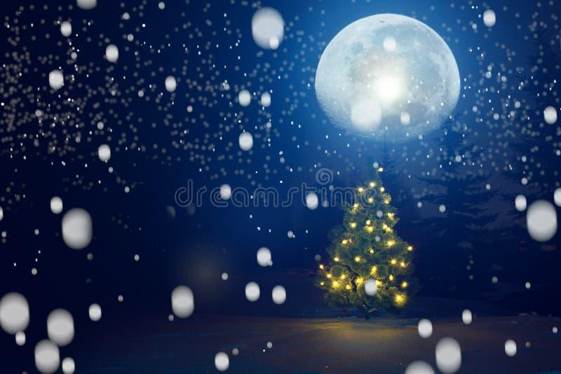 Buon Natale! Notte di natale gelida di inverno - luci leggiadramente leggere magiche su un fondo nevoso in foresta durante una bu immagini stock