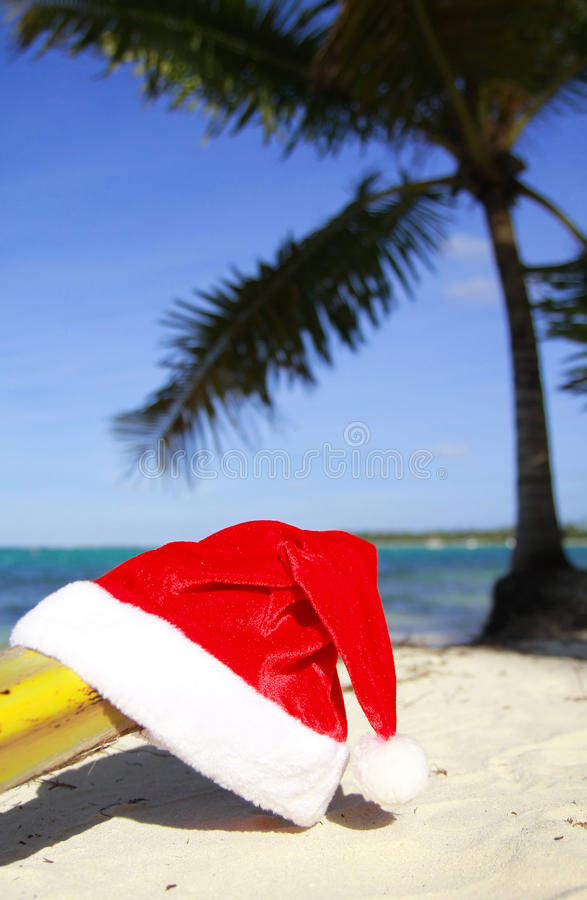 Buon Natale tropicale! immagine stock libera da diritti