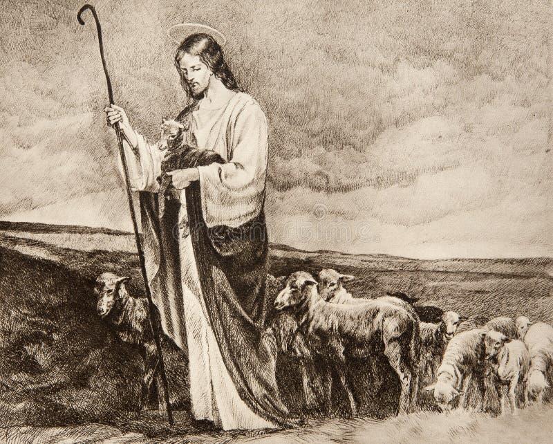 Buon pastore fotografia stock libera da diritti