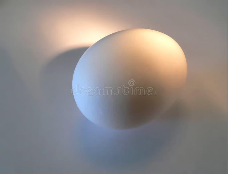 Buon uovo fotografie stock libere da diritti