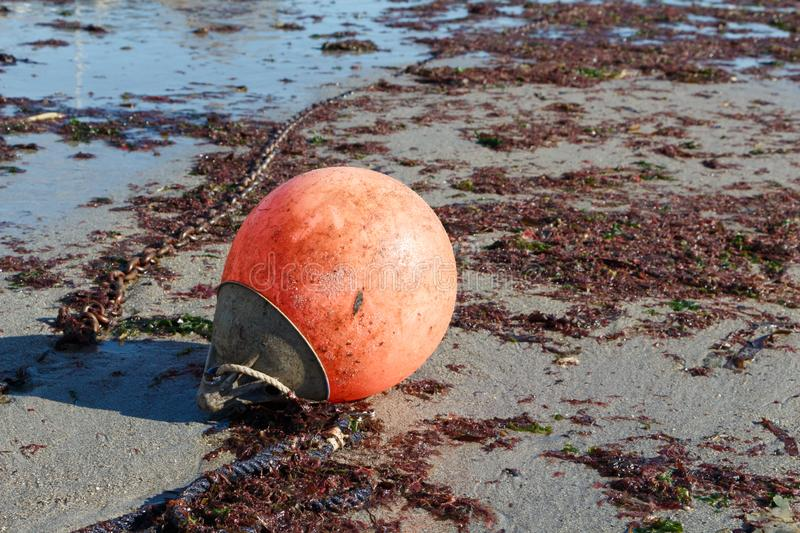 Buoy on the sand. Buoy and chain on the sand at low tide royalty free stock photography