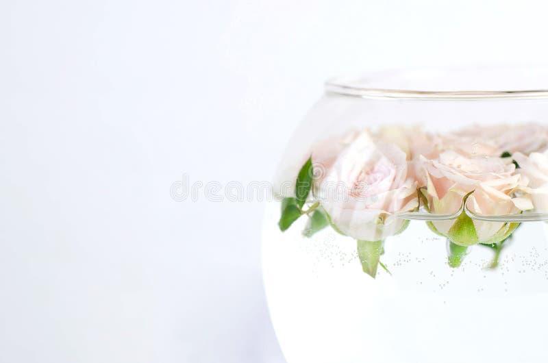 Buque redondo con agua y las pequeñas rosas del melocotón imagen de archivo libre de regalías