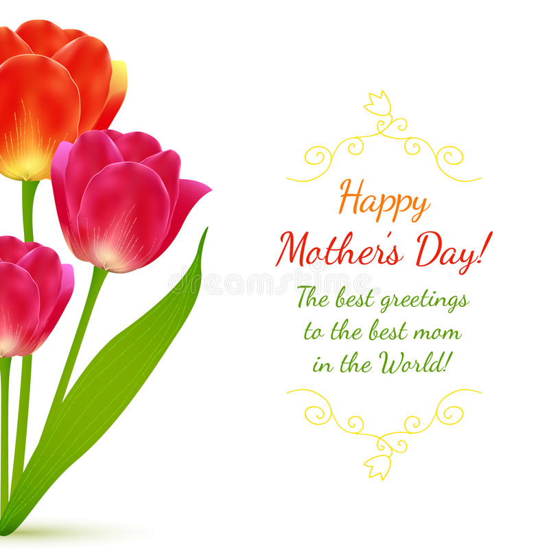 Buquet των τουλιπών για την ημέρα της μητέρας ελεύθερη απεικόνιση δικαιώματος