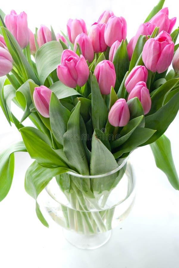 Ρόδινες τουλίπες vase στοκ εικόνες