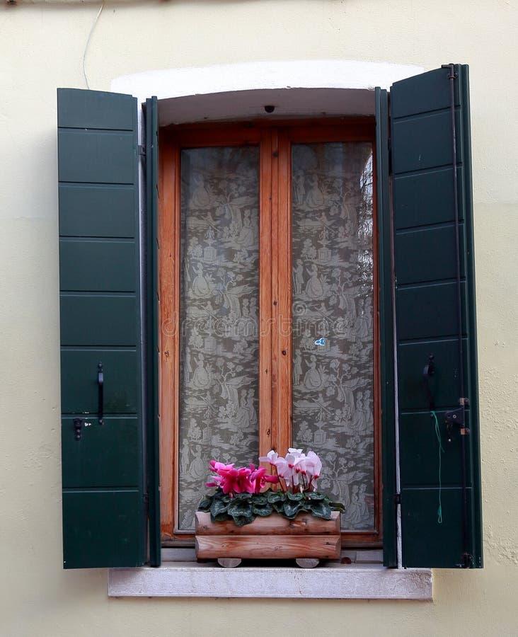 Окно дома в Burano с цветками и шторками, Италией стоковое изображение