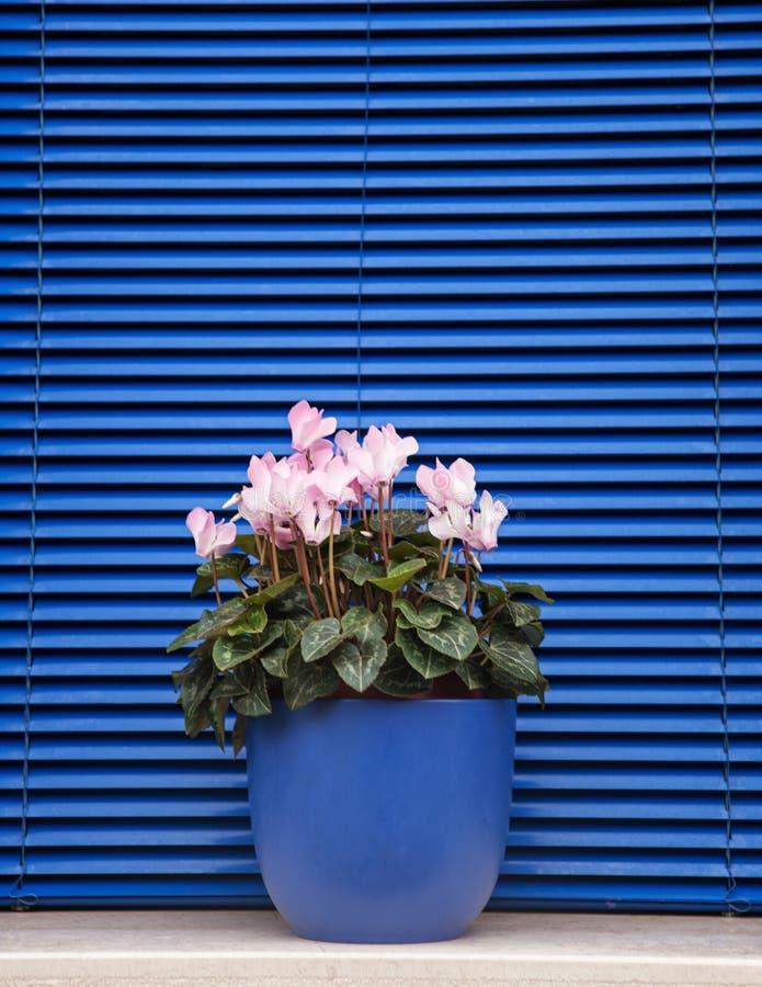 Burano, Veneza, Itália foto de stock