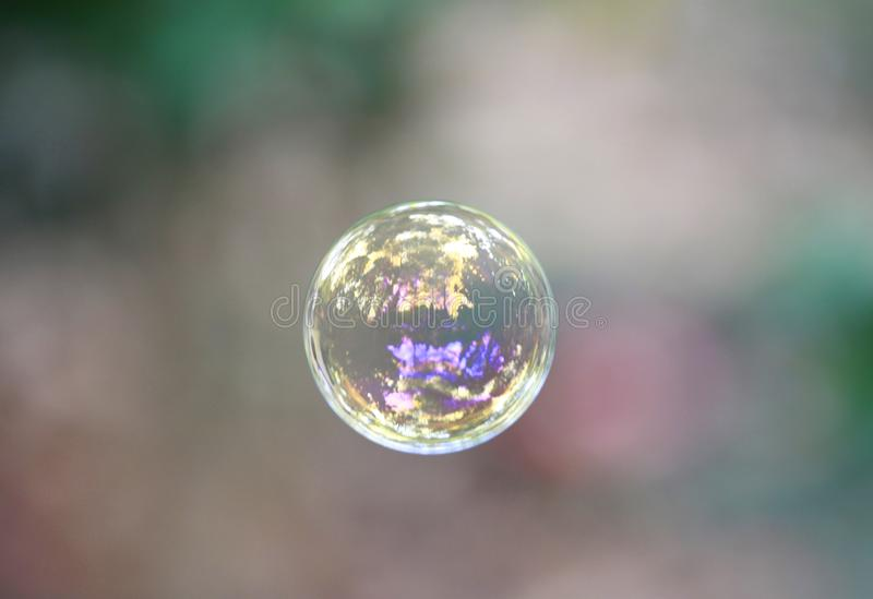 Burbuja clara con reflexiones del bosque en ella fotografía de archivo libre de regalías