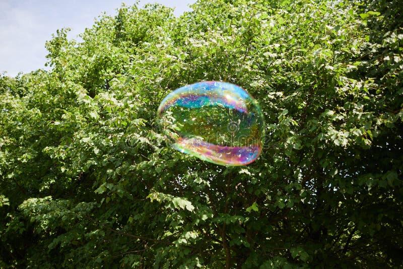 Burbuja de jabón colorida en aire fotografía de archivo